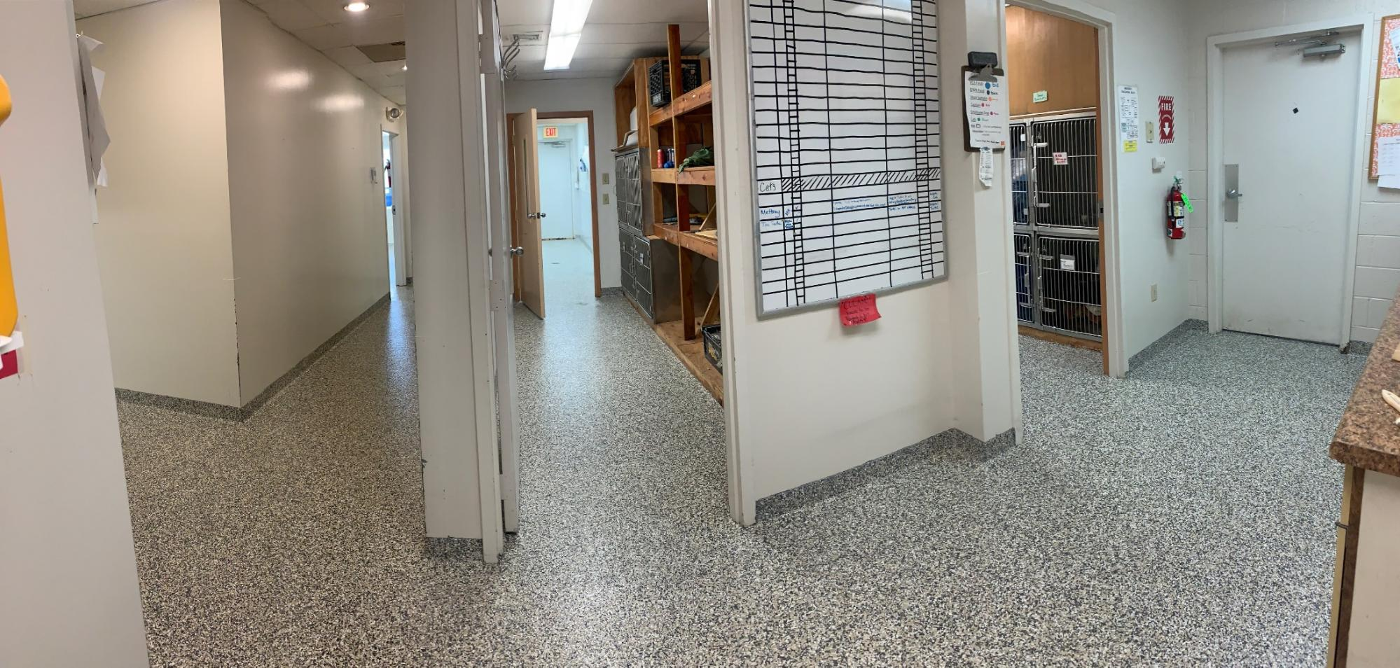 epoxy flooring for animal care in CT